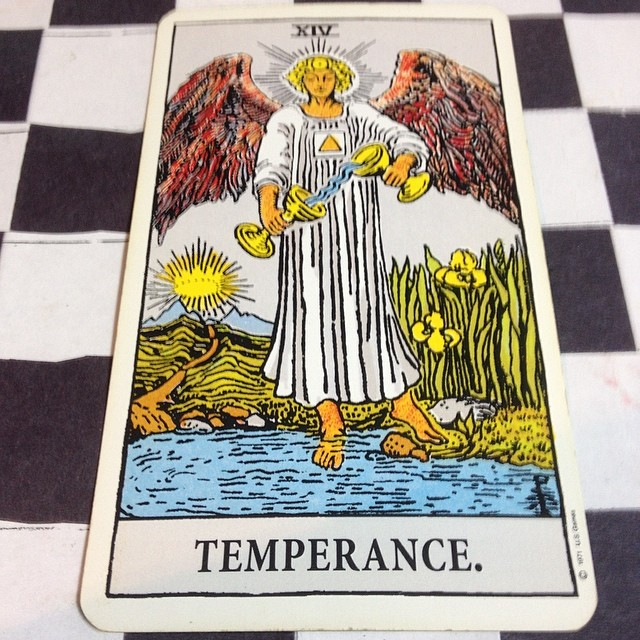 Where the brain is at Temperance the settling towards a middle ground