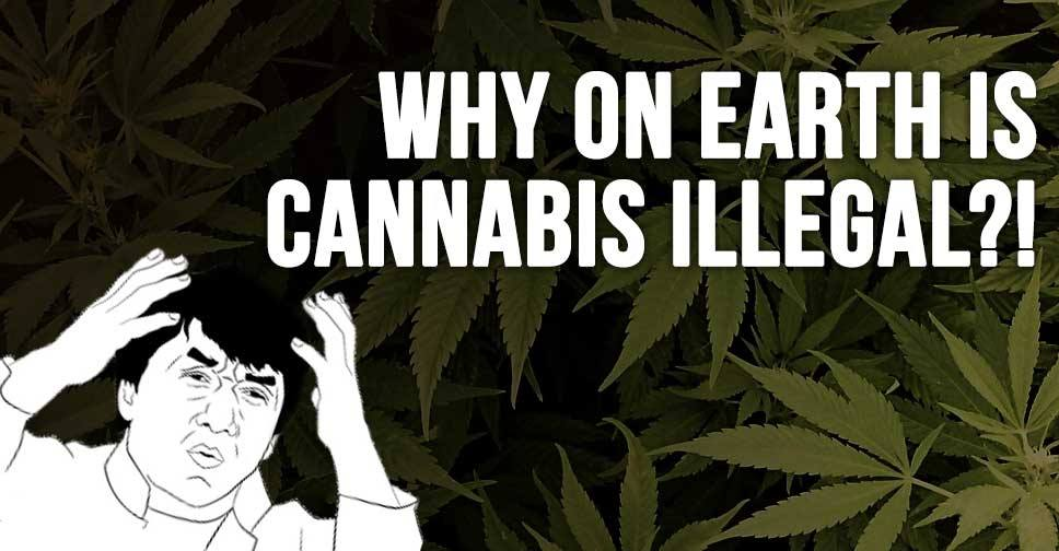 http://iheartintelligence.com/2015/04/05/why-on-earth-is-cannabis-illegal/
